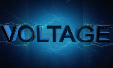 Voltage Variations Effects on Power Plant Equipment